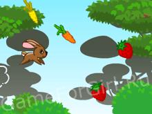 Заяц-попрыгаец