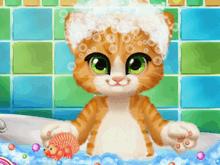 Уход за котёнком: Ванна для рыжика