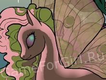 Пони-бабочка